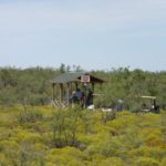 Wilson Shooting Station - 2016 PBLA Sporting Clays Tournament